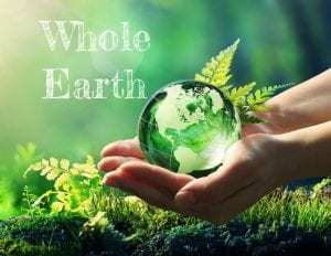Premium Discount Kratom Whole Earth Gifts